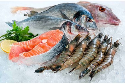 Морская рыба (21)